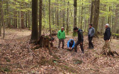 Biodiversità: terminati i rilievi in foresta