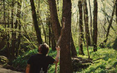Dal Progetto BioΔ4 nasce il turismo slow della biodiversità nelle foreste di Ampezzo